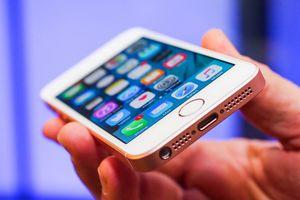 Iphone 5se: 4-дюймовый смартфон apple в корпусе 5s и с начинкой iphone 6 будет продаваться по цене $450