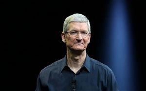 Многочисленные подробности о новых продуктах apple раскрыты накануне анонса