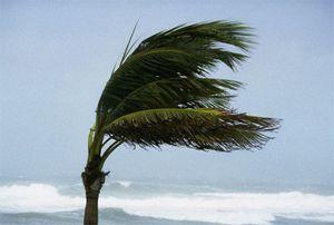 Ураган пк движется в африку и азию